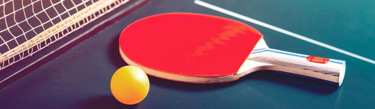 Table Tennis & Ping Pong Tables For Sale